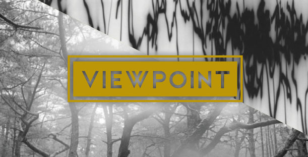 VIEWPOINT exhibit