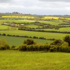 Study Abroad Offers Chance to See Ireland